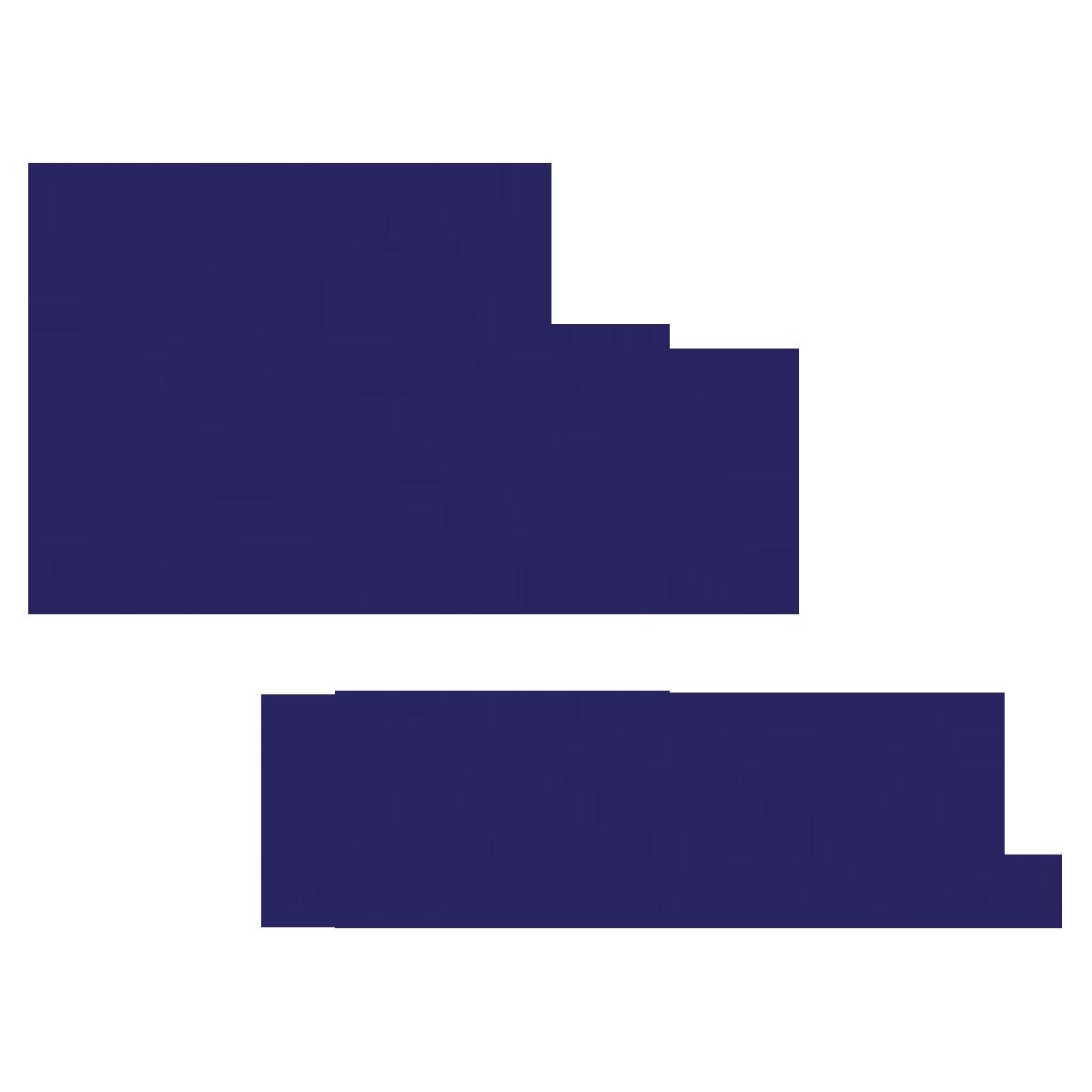 Kiguru & Associates